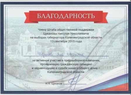 Копия Шерина Я.И. -за участие в орг. выборов-15г.